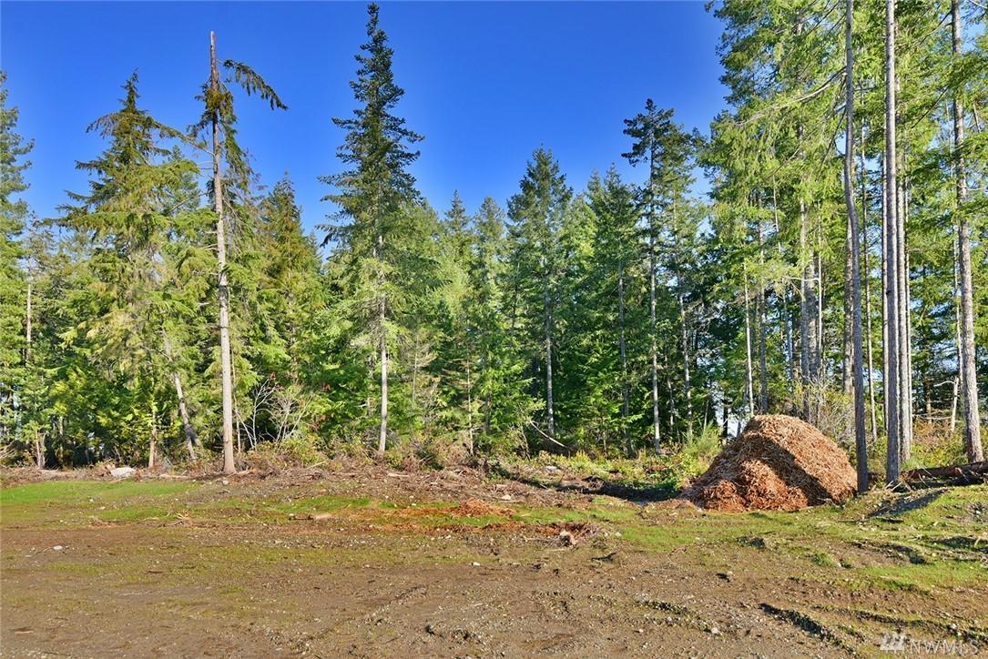 Photo 7 5516 Muddy Paws (Lot 17) Ct Bremerton WA 98312