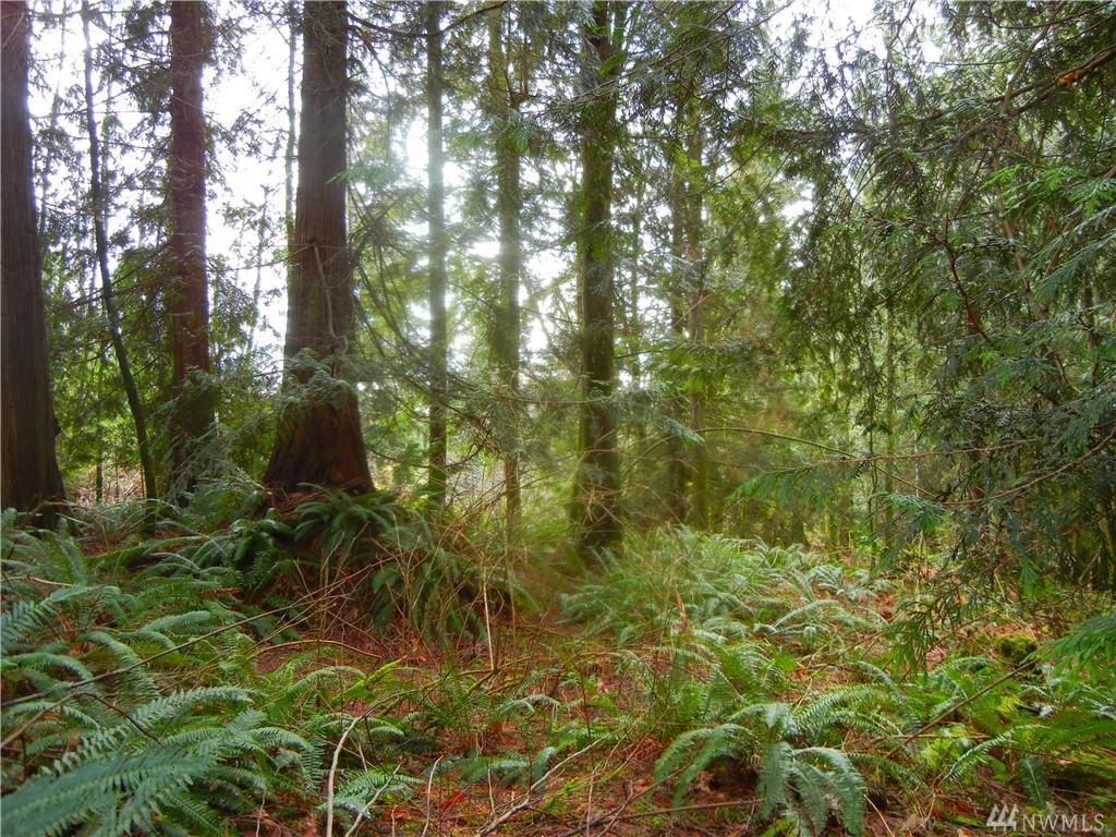 Photo 9 12409 Mountain Loop Hwy Granite Falls WA 98252