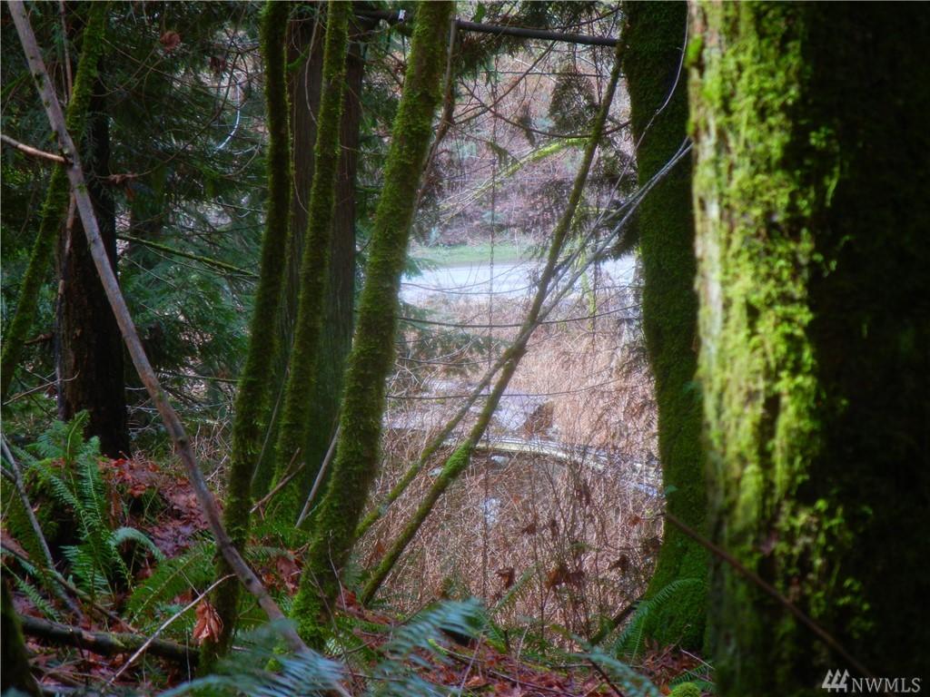 Photo 17 12409 Mountain Loop Hwy Granite Falls WA 98252