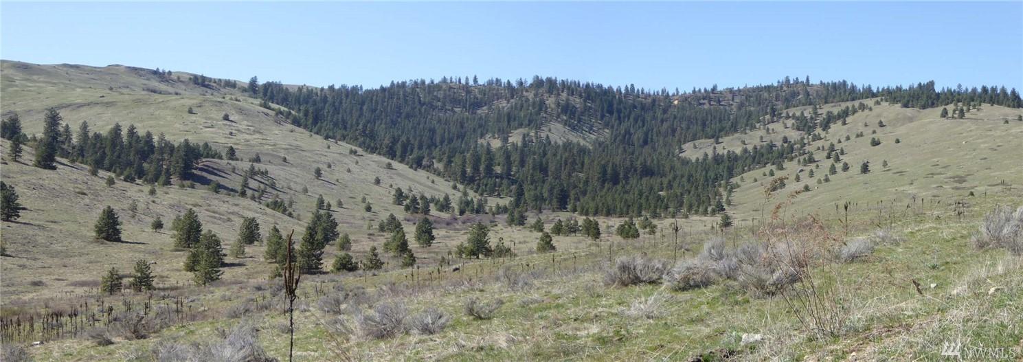 1 tbd Mineral Ridge Rd Nespelem WA 99155