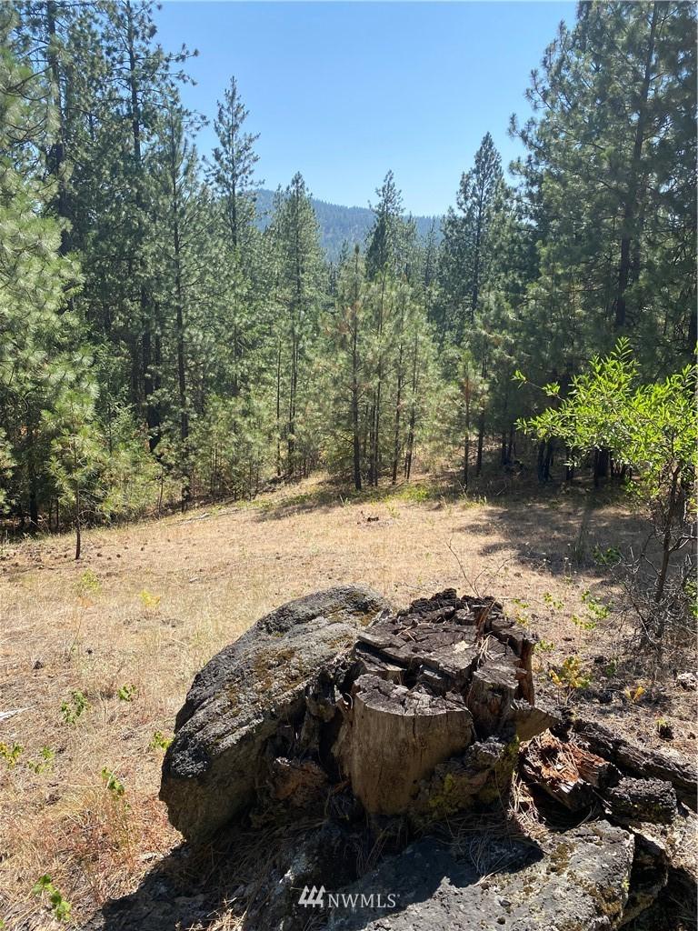 5069 Rail Canyon Road #C Springdale WA 99173